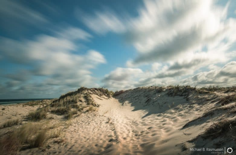 The dunes at tisvilde