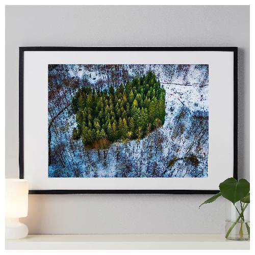 Emerald skoven